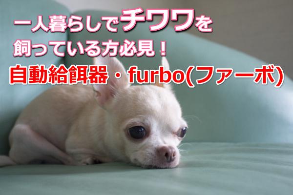 チワワ・furbo(ファーボ)